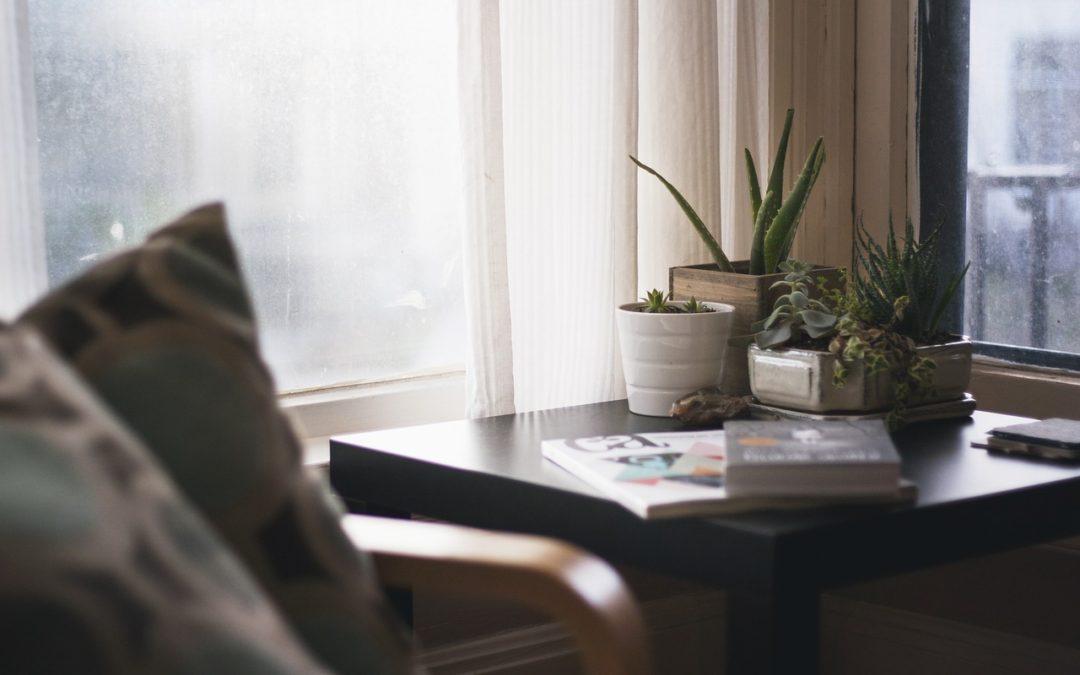 Le 6 migliori piante per decorare la camera da letto