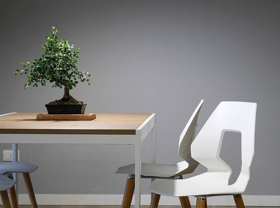 La Sedia: Un Design in Continua Evoluzione